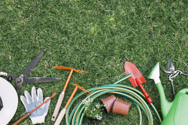lawn equipement