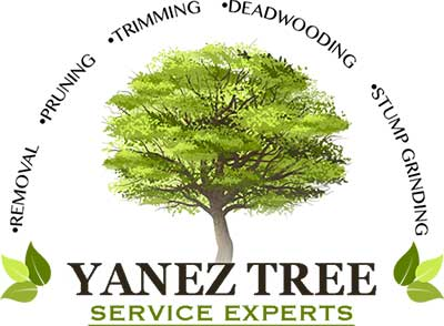 Yanez Tree Service Experts Logo